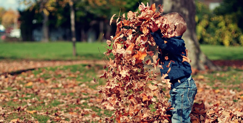 a young boy throwing leaves in the air