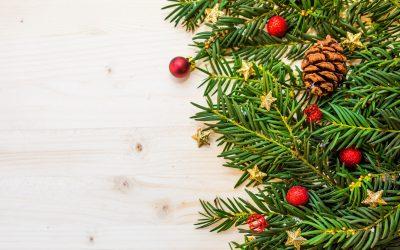 Holiday/Christmas Celebration on Zoom (55+)