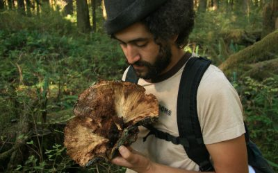 Walking the Mycelial Web: Community Art & Ecology Project Introduction