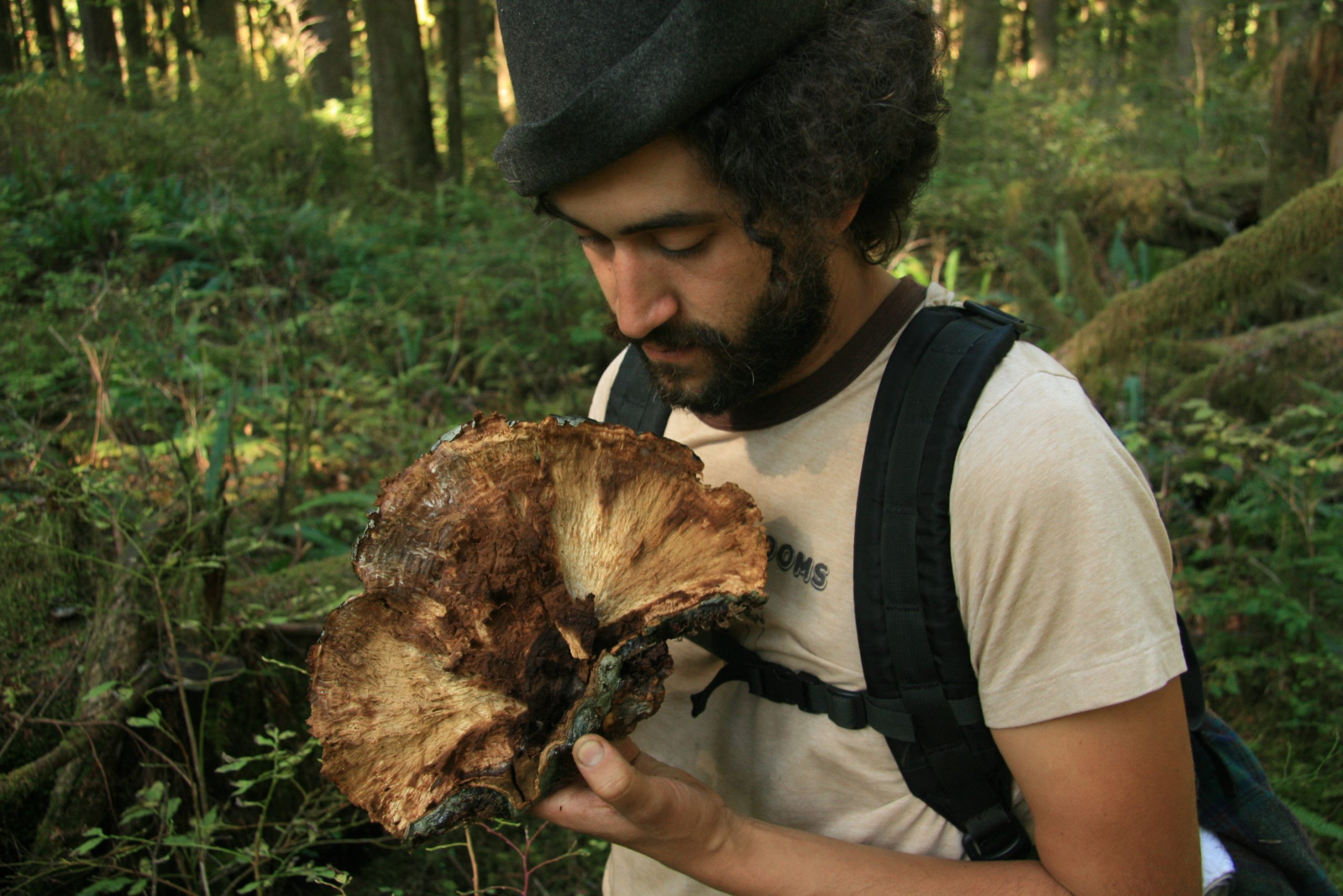 Willoughby Arevalo stands in a forest surrounded by trees while holding a large mushroom.