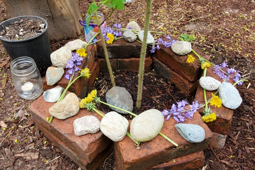 Bricks covered in stones and flowers circle the base of a newly planted rose bush